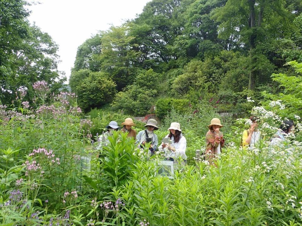 広島植物公園での植物観察会