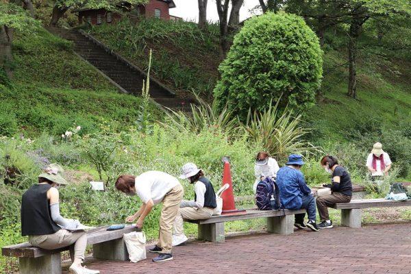 半田山公園での植物観察